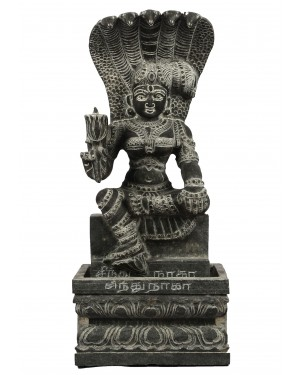Sindhu Naga Kanni with Peedam
